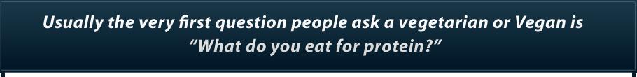 Online Vegetarian Guide